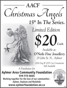 aacf-angels-nov16